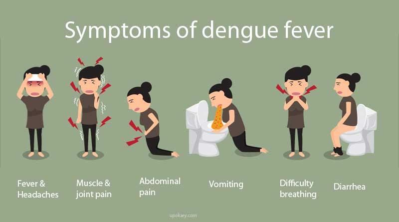 symptom dengue