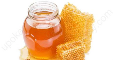 Honey jar with beehive