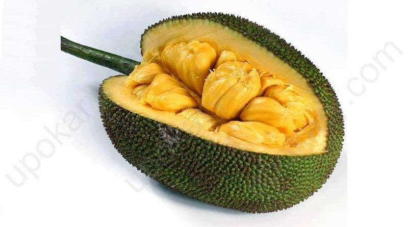 ripe jackfruit