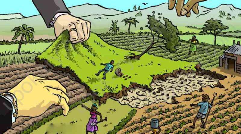 land grabber