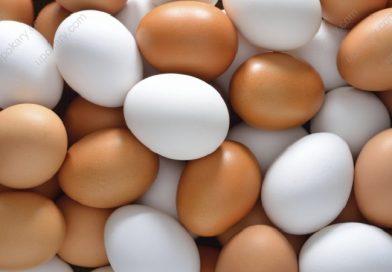 super food egg