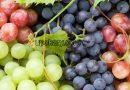 healthy grape