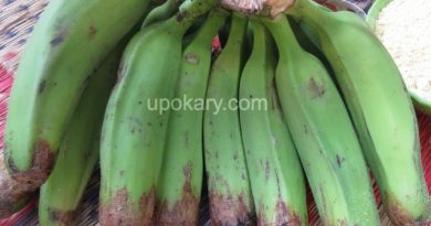healthy green banana