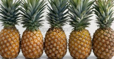 healthy pine apple