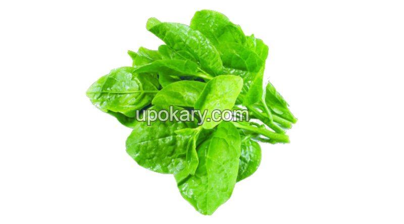 spinach12