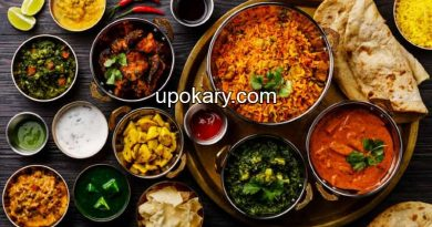 Non-vegetarian food