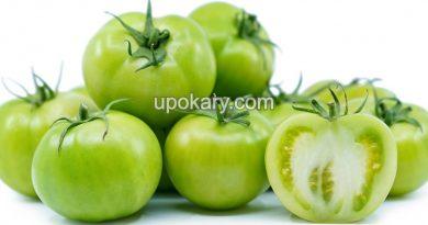 healthy green tomato