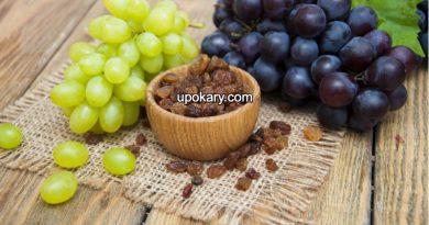 GrapesRaisins