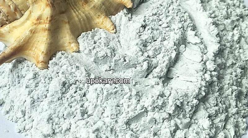 conch powder