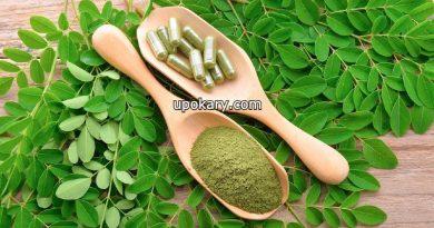 drumstick leaf