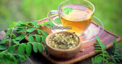 moringa tea benefite
