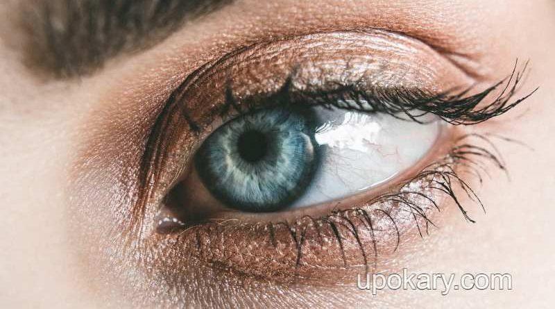 Black-under-the-eyes