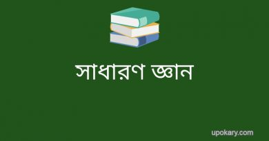 bangla 2