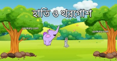 elephant and rabbite stroy