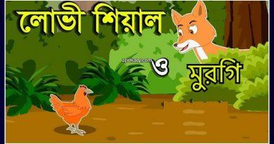 fox hen story