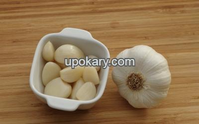 garlic strock