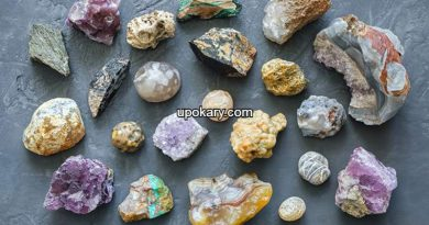 Metal and Mineral
