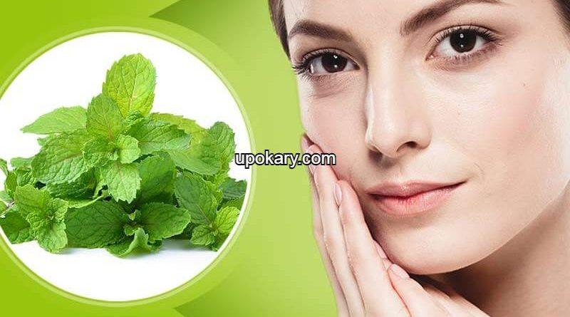 mint leaves beauty benefits