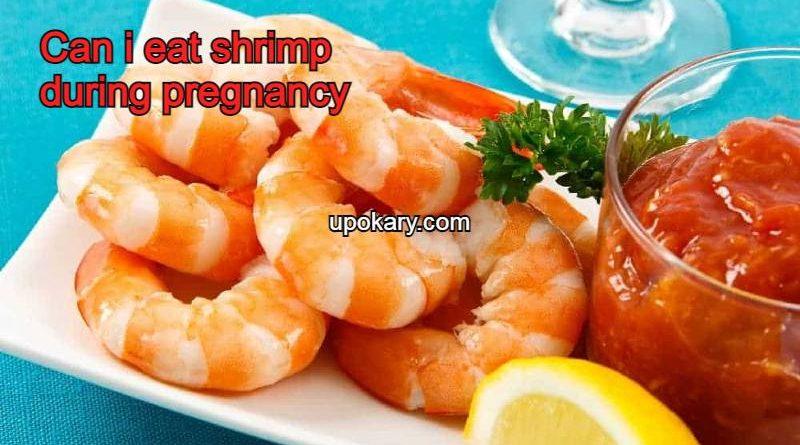 shrimpformother