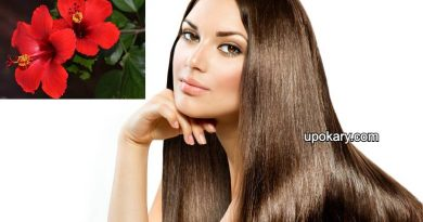 hair for hibiscus